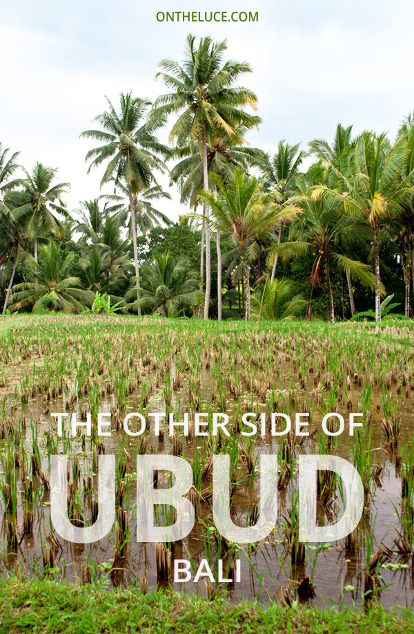 The other side of Ubud, Bali – On the Luce travel blog