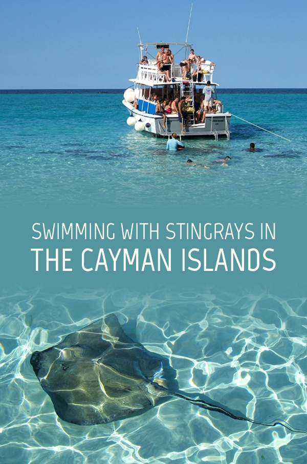 Swimming with stingrays in the Cayman Islands – On the Luce travel blog