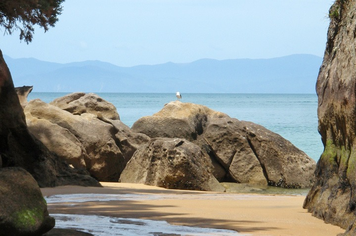 Rock formations in Abel Tasman National Park