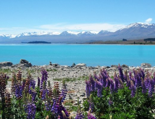 turquoise waters of Lake Tekapo