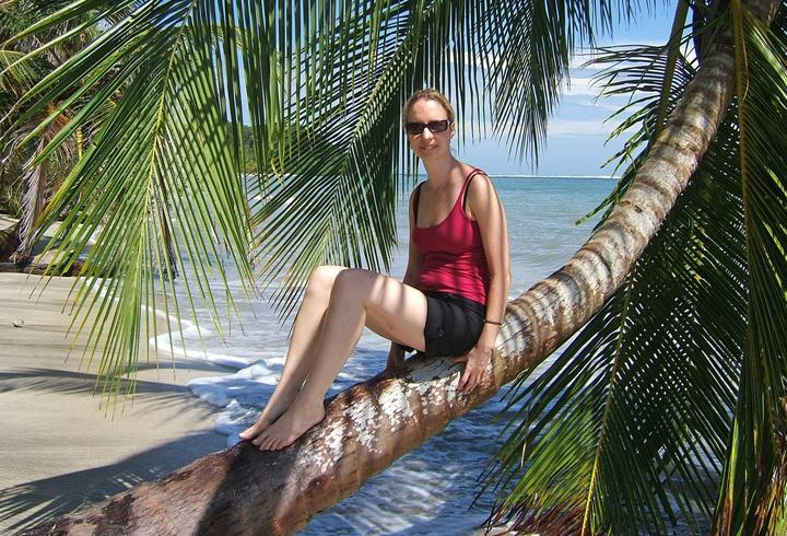 Palm tree at Cahuita National Park