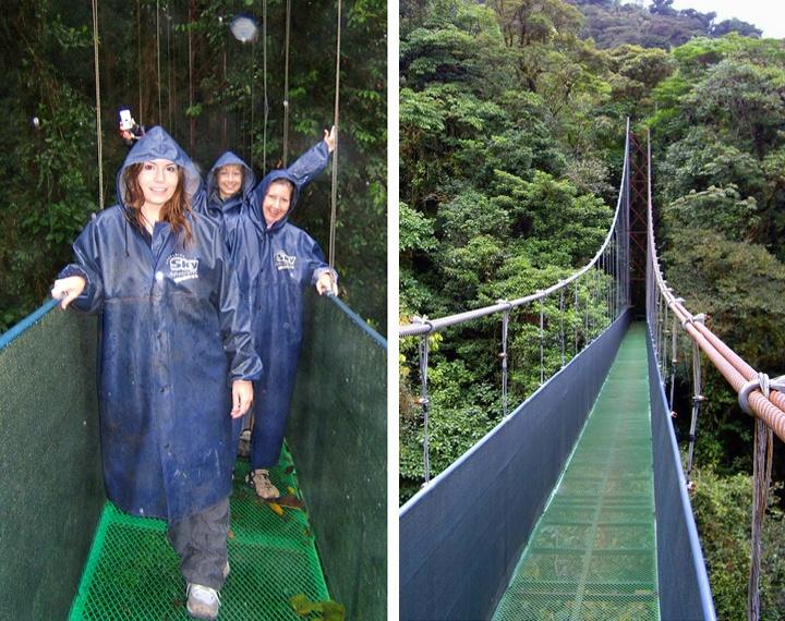 Sky walk in Monteverde