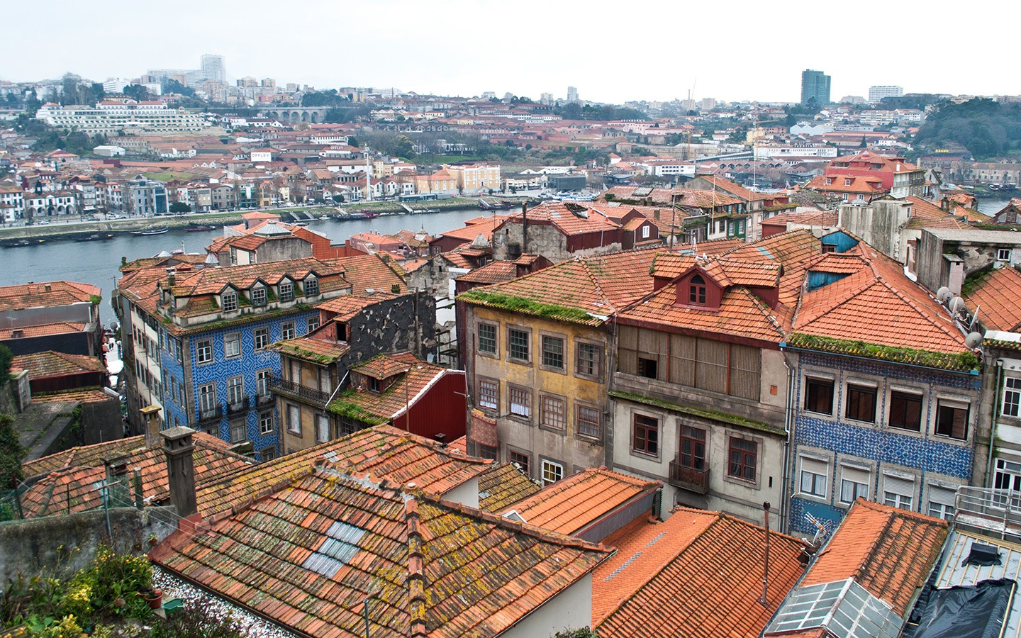 Rooftops in the historic Ribeira district of Porto