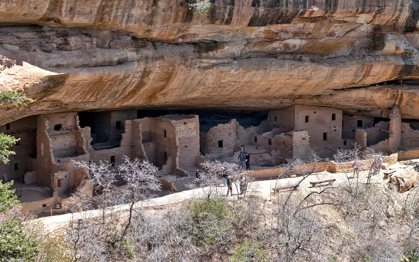 Cliff houses at Mesa Verde National Park, Colorado, USA