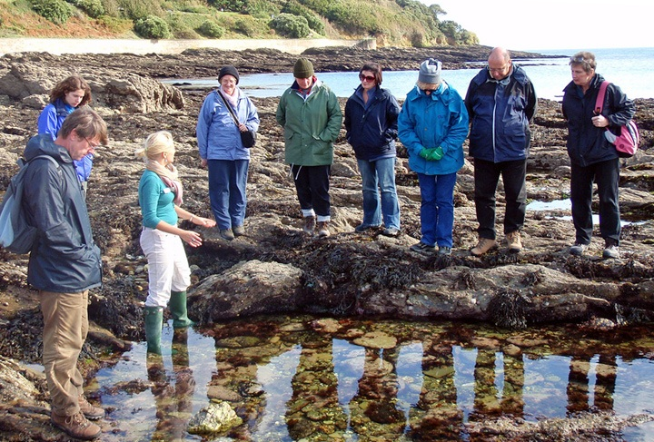 Rockpooling on Beachsweep holiday, Cornwall
