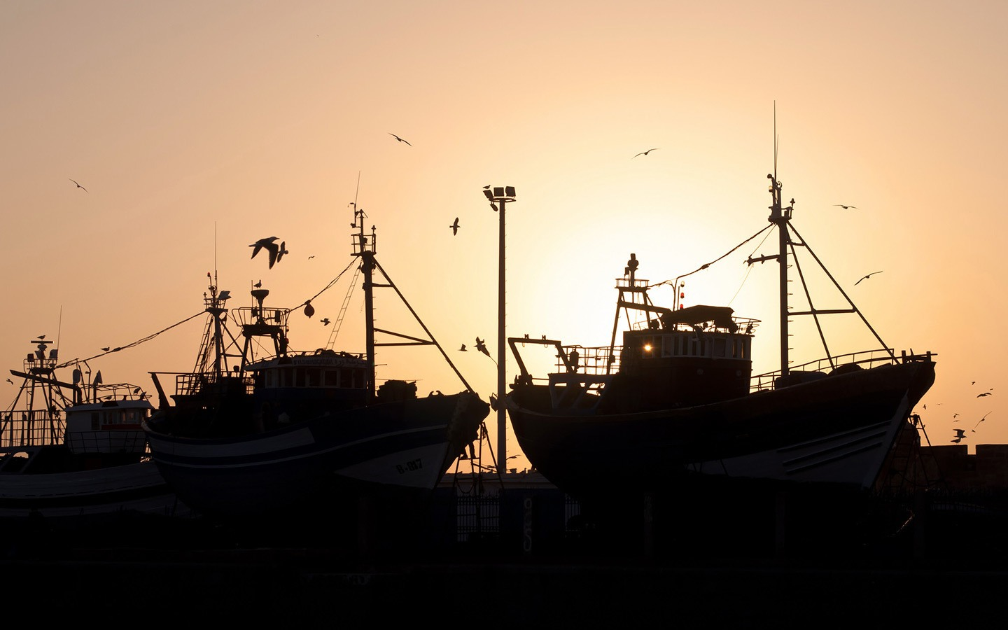 Fishing boats silhouetted against the sunset in Essaouira