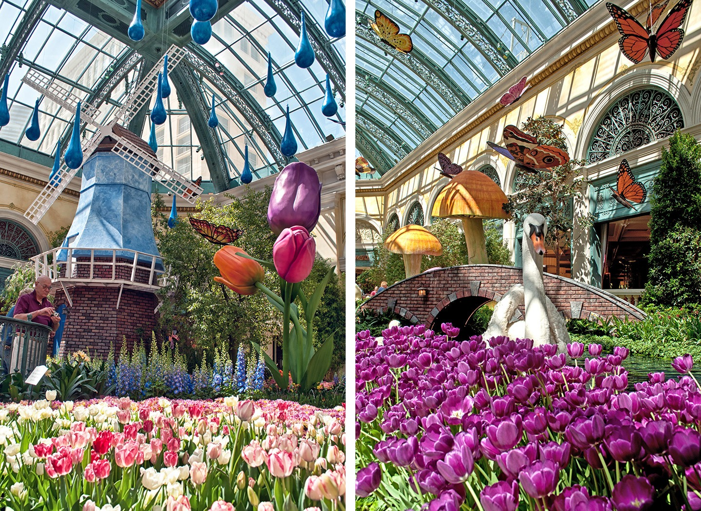 Indoor botanical gardens at the Bellagio casino in Las Vegas, Nevada USA