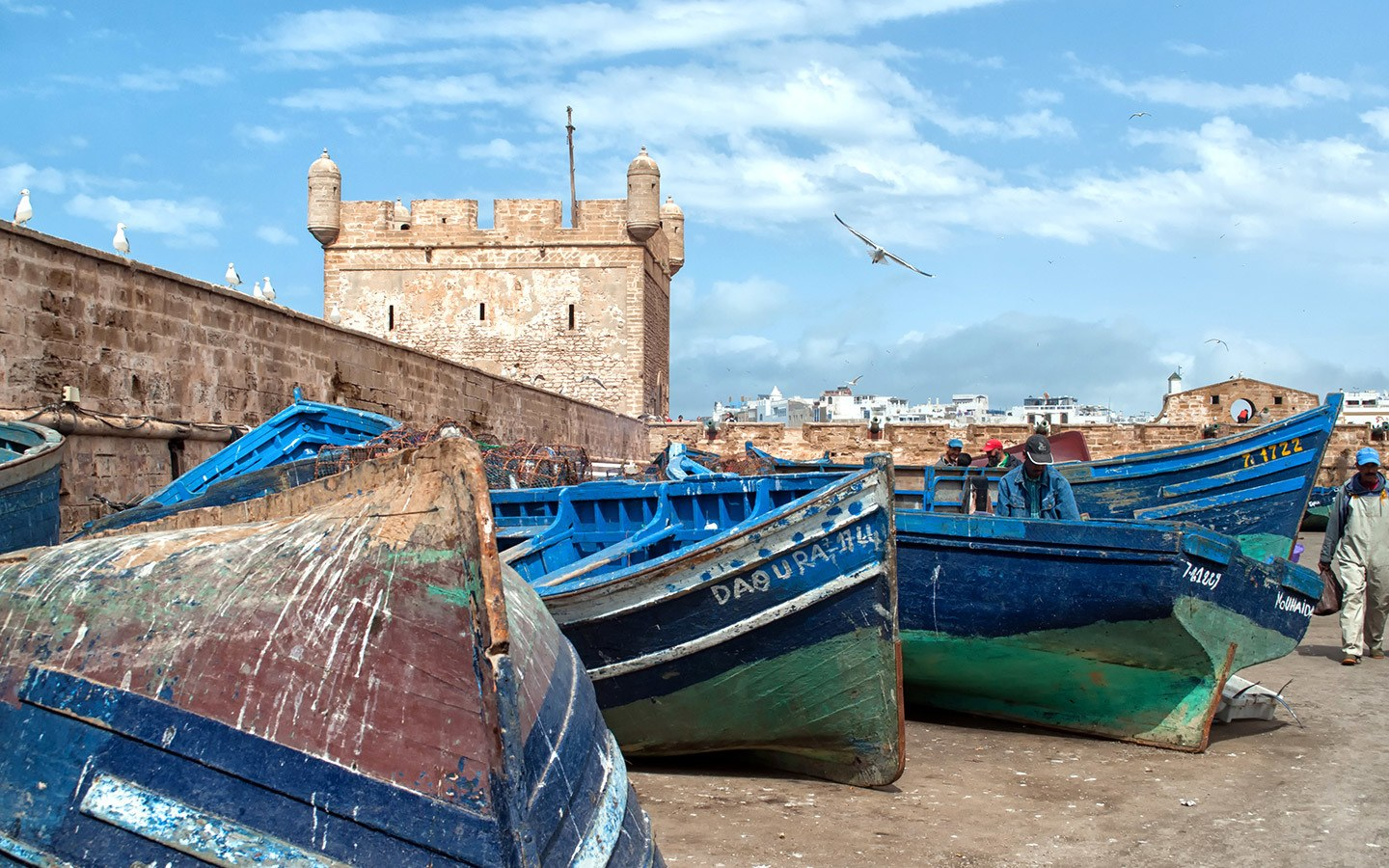 Boats in the harbour in Essaouira, Morocco