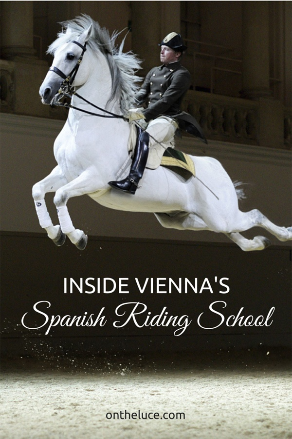 Inside Vienna's Spanish Riding School – On the Luce travel blog