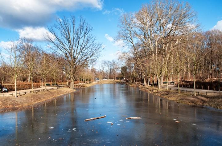 Berlin's Tiergarten in winter