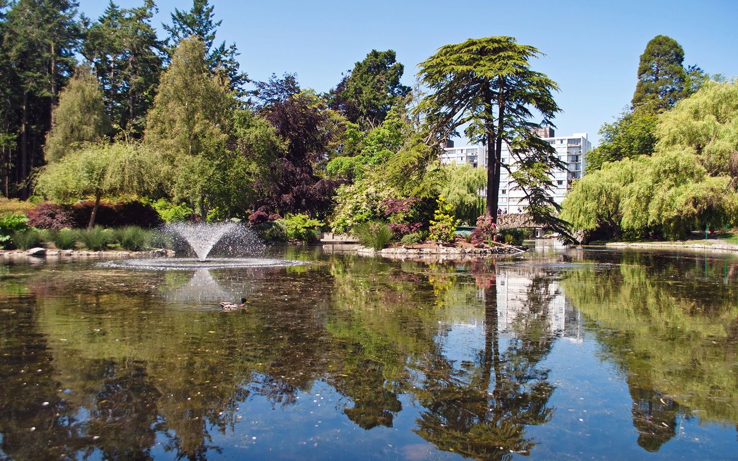 Beacon Hill Park in Victoria, British Columbia, Canada