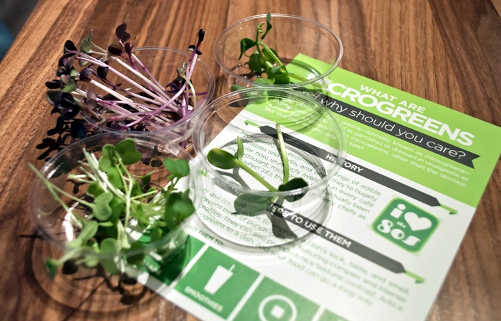 Microgreens at Urban Cultivator, Vancouver