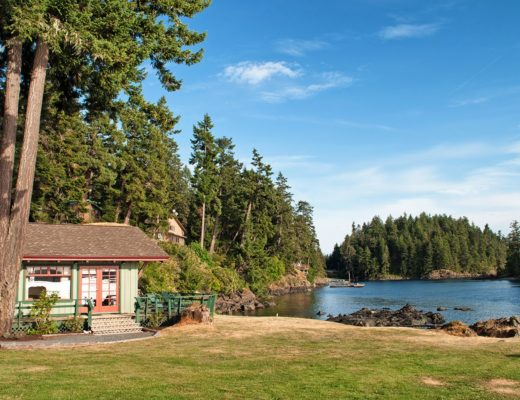 A Vancouver Island road trip: From the tip to the top