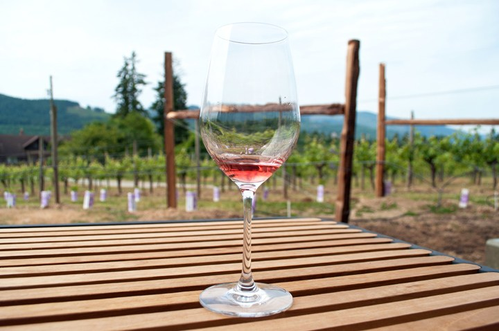 Blue Grouse Winery in Canada