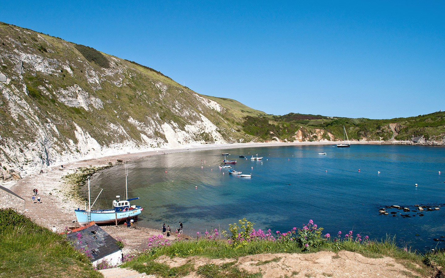 Lulworth Cove in Dorest in summer, an alternative to visiting Cornwall