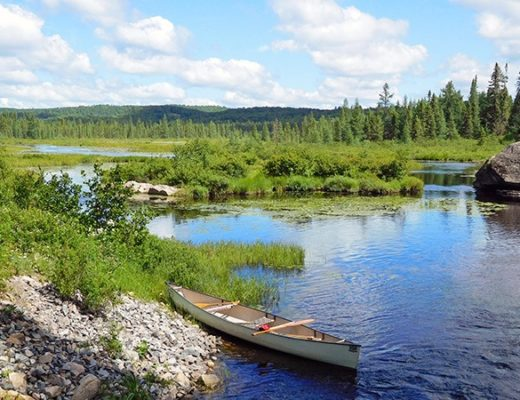Land of the lakes: Exploring Ontario's Provincial Parks