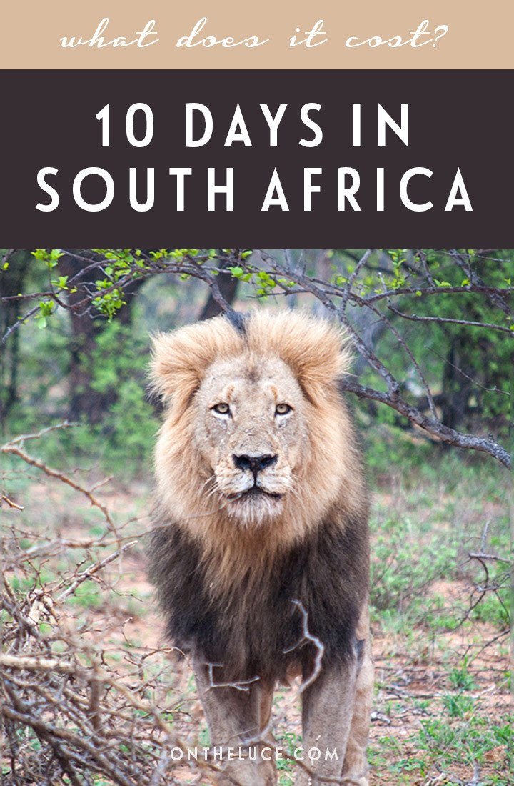 How much does it cost to visit South Africa? A trip budget breakdown for spending 10 days visiting Cape Town, the Kruger and Johannesburg. #SouthAfrica #travelbudget