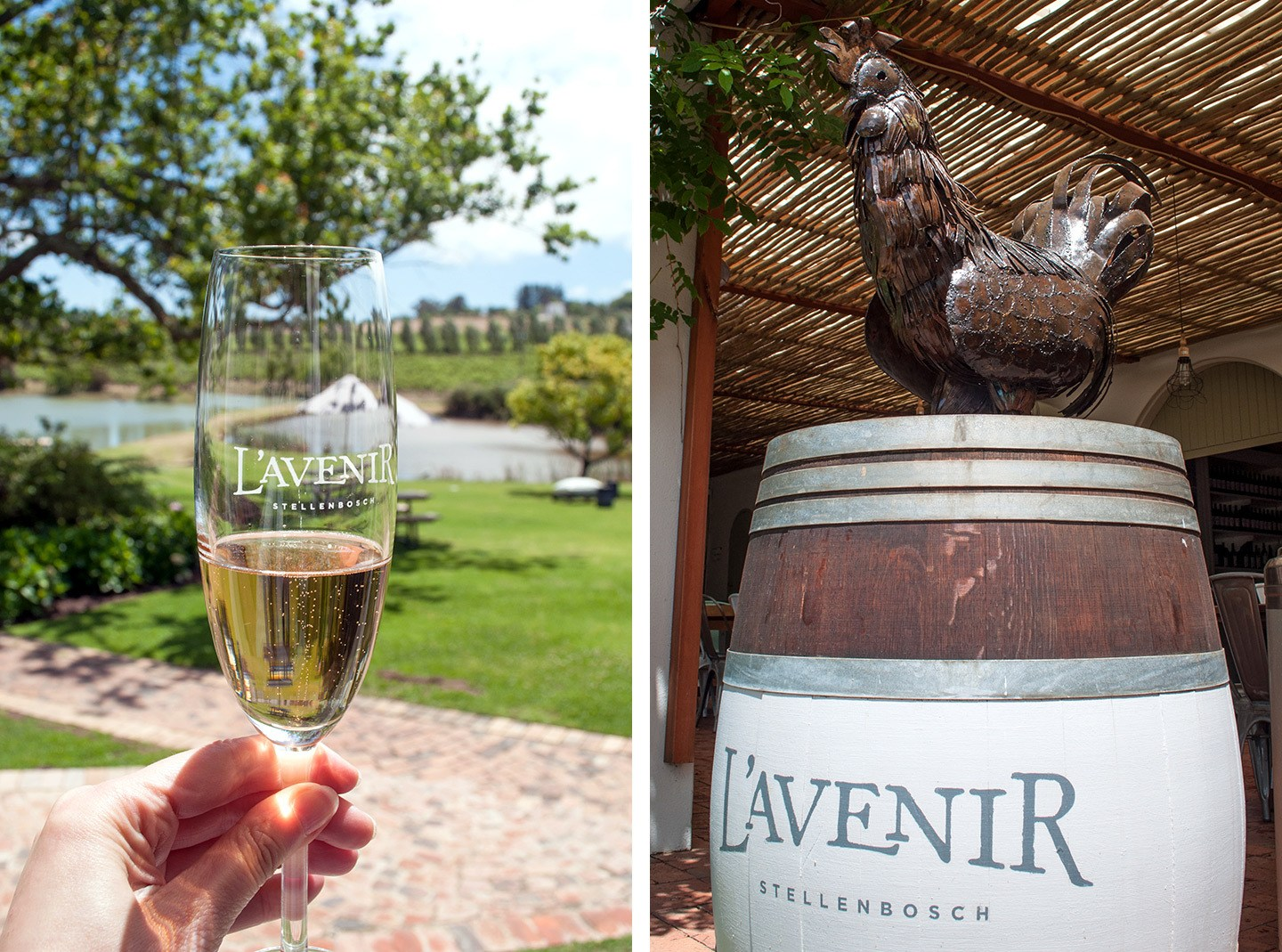 L'Avenir in the Cape Winelands at Stellenbosch South Africa