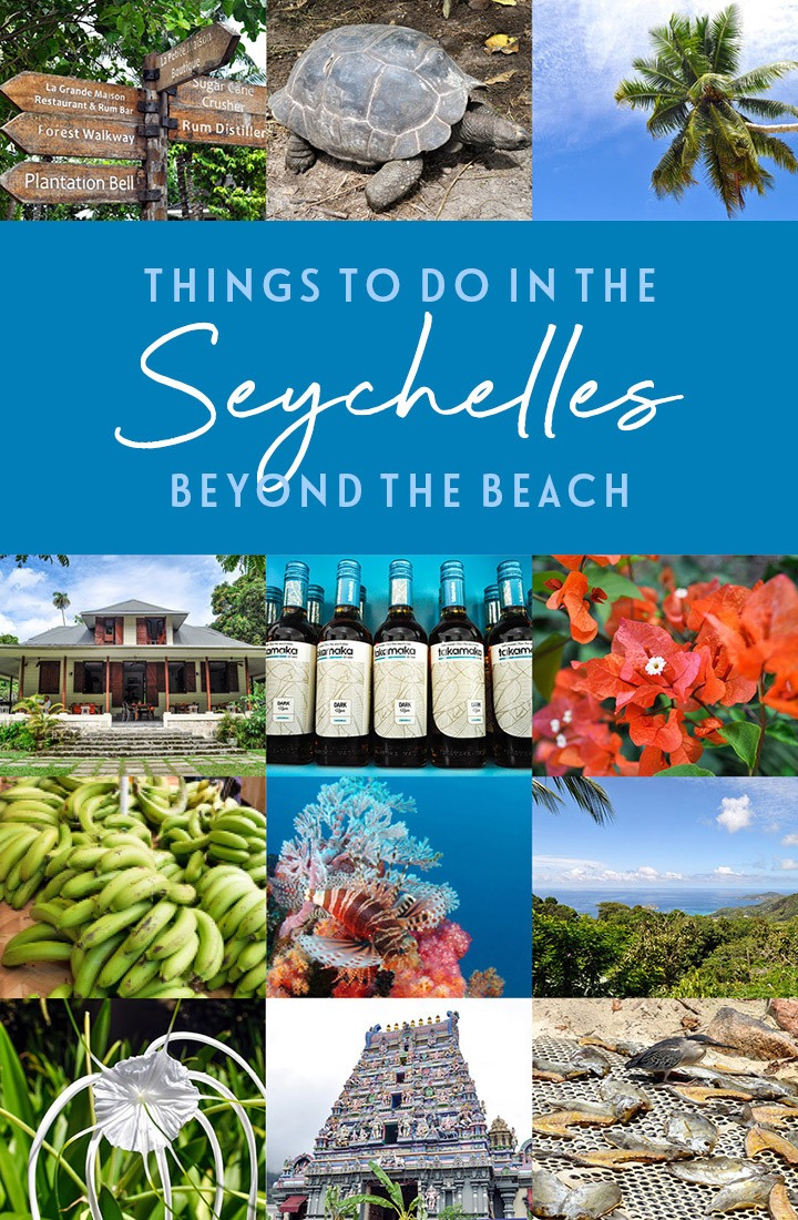 The Seychelles is beach heaven, but if you're more into culture, wildlife or adventure, there are plenty of alternative things to do in the Seychelles too. #Seychelles #IndianOcean #alternative