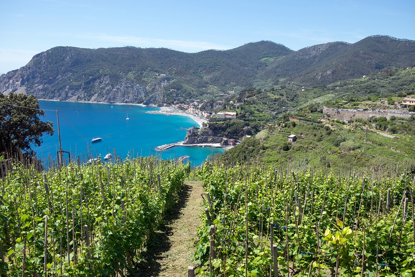 The first-timers guide to visiting the Cinque Terre – walking routes to Monterosso