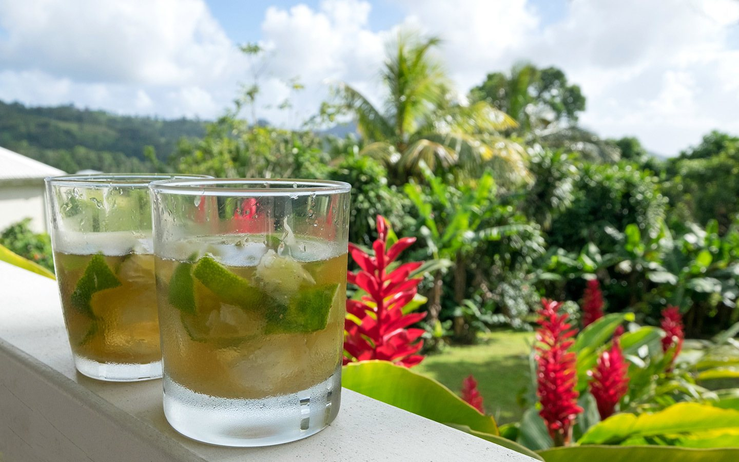 Ti' Punch cocktails in Guadeloupe, Caribbean