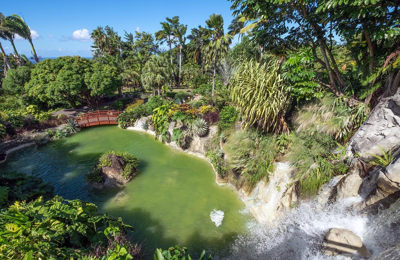 Lake at the Deshaies' Botanic Gardens in Guadeloupe