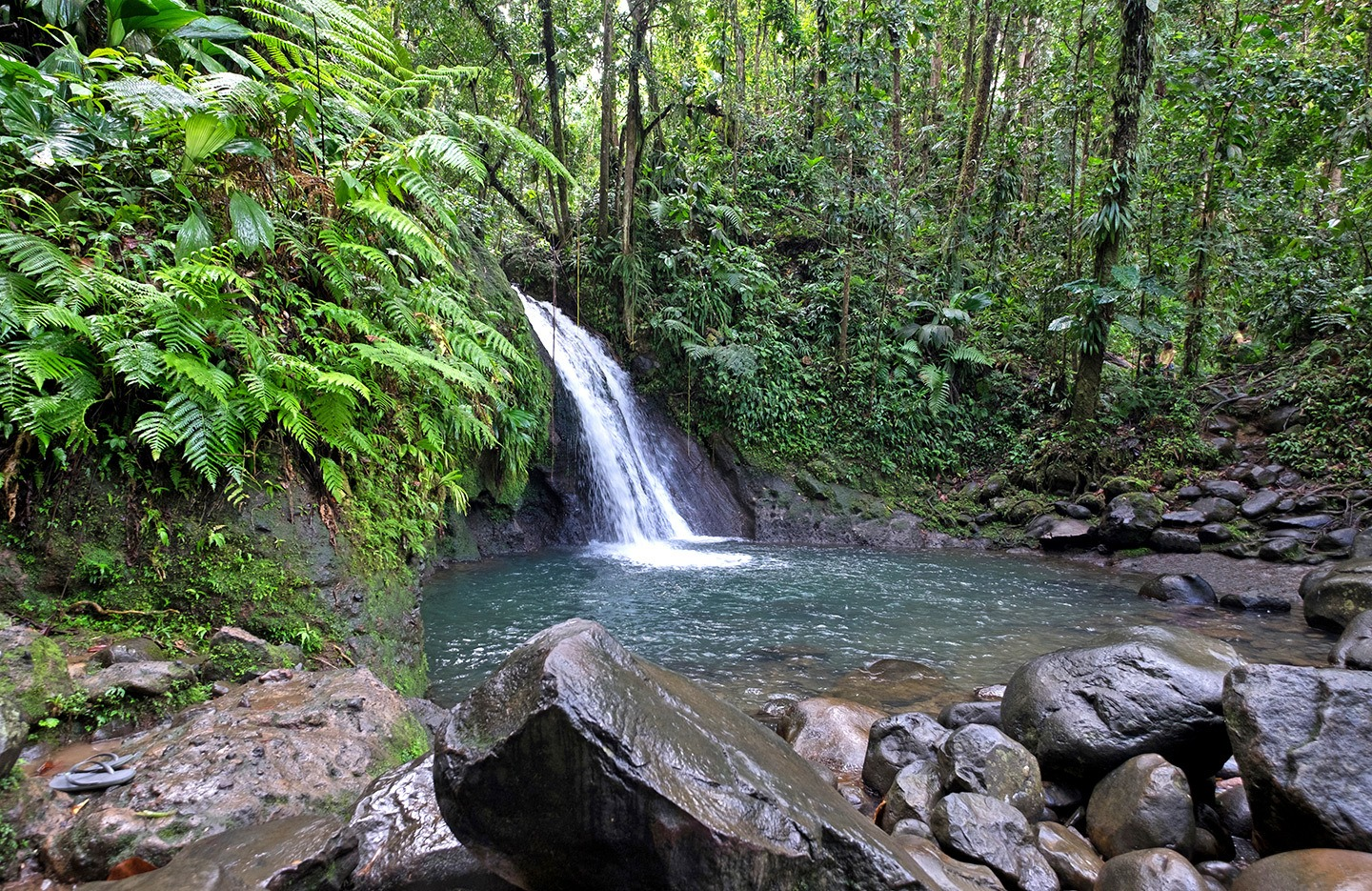 The Cascade aux Ecrevisses waterfall in Basse-Terre, Guadeloupe