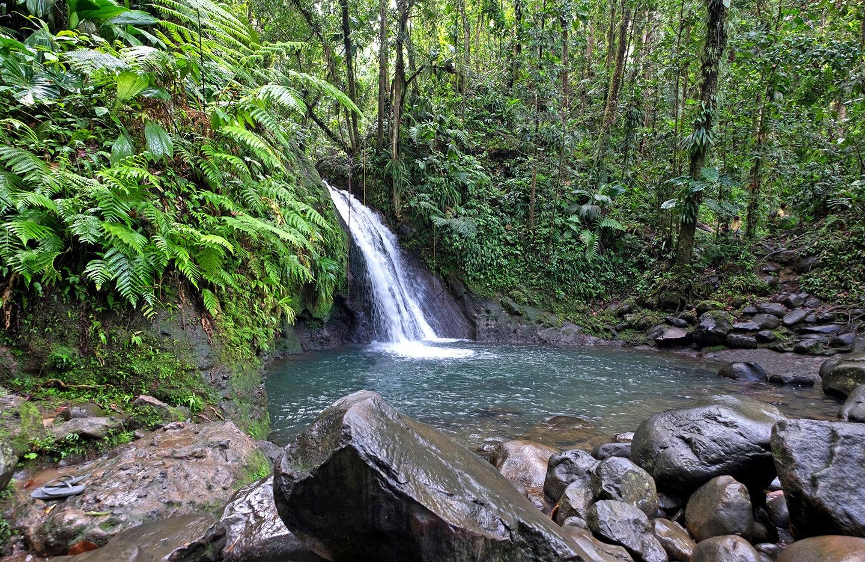 Cascade aux Ecrevisses, Basse-Terre, Guadeloupe