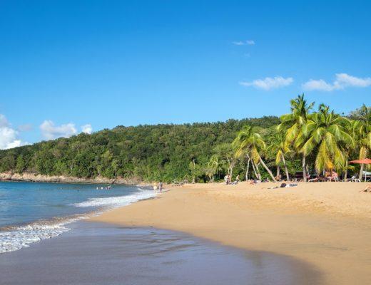 Anse La Perle beach in Guadeloupe, Caribbean