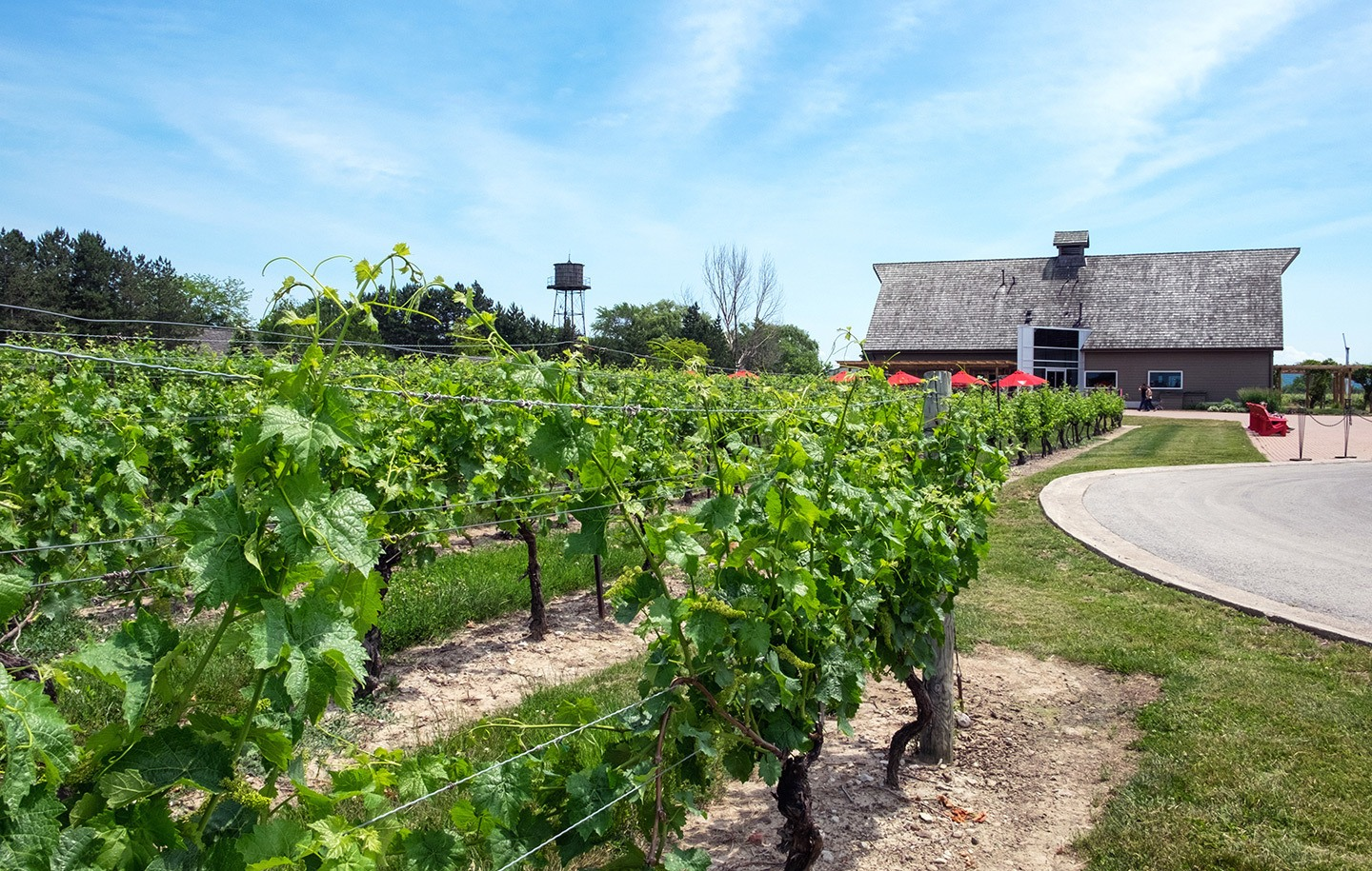 Inniskillin winery in Niagara-on-the-Lake, Ontario, Canada