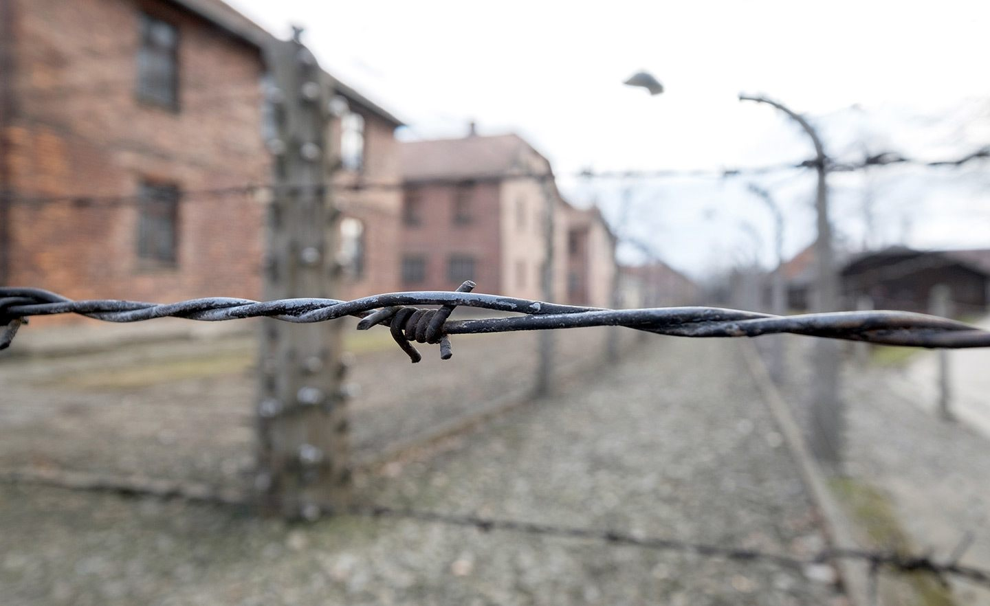 Barbed wire at Auschwitz-Birkenau, Poland