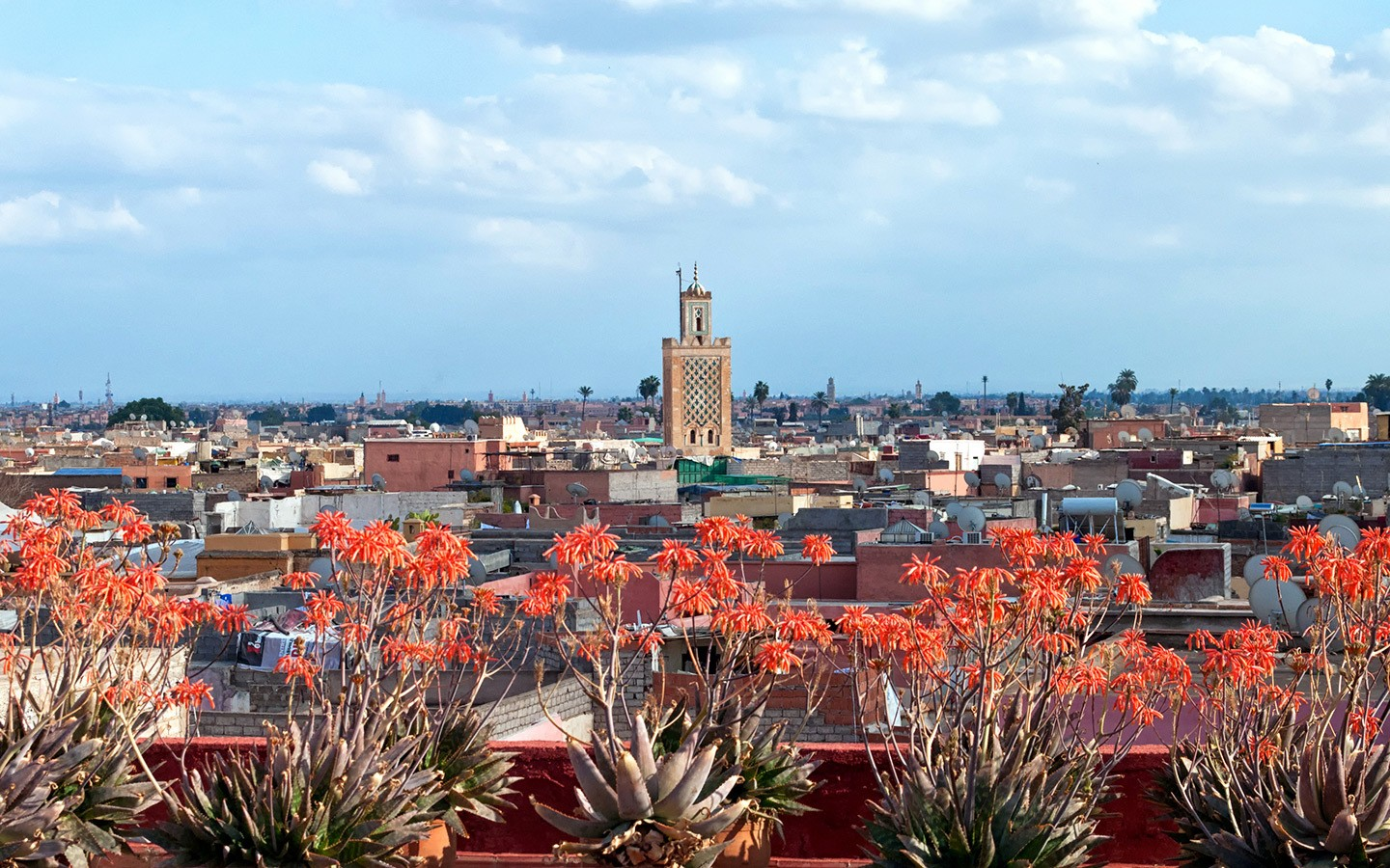 Views over the rooftops of the medina in Marrakech, Morocco