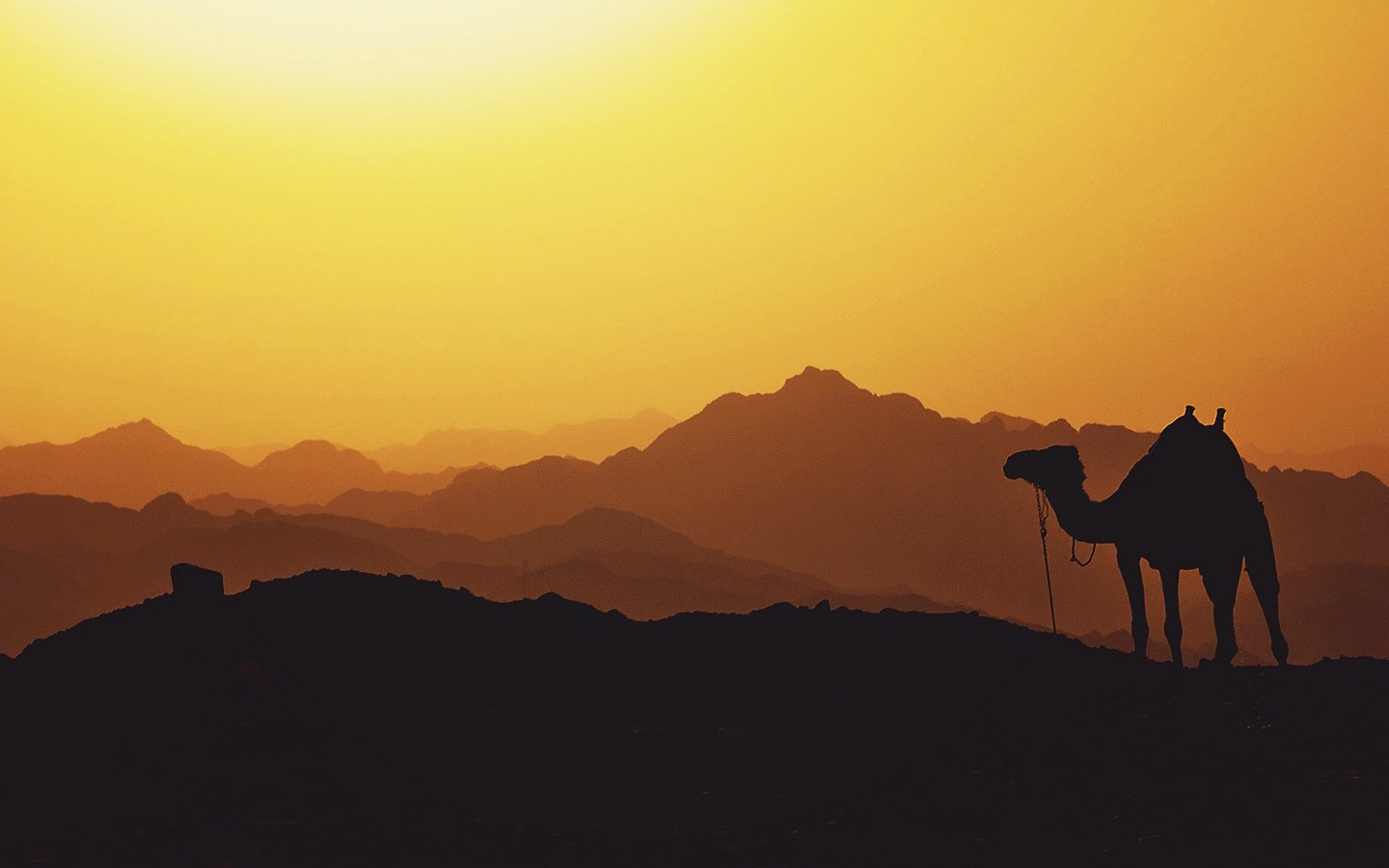 Middle East sunset