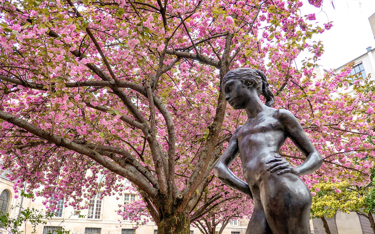 Paris in the spring: 9 things to do in Paris in springtime