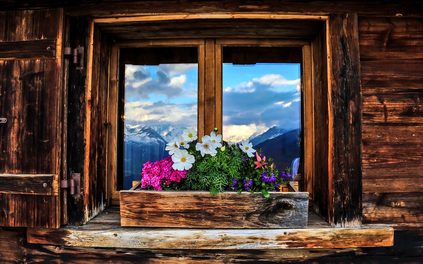 Window box with flowers in Swiss mountain chalet