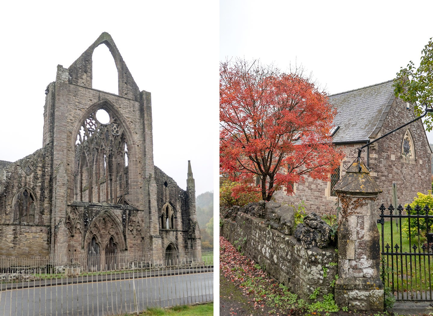 Tintern Abbey and autumn colours