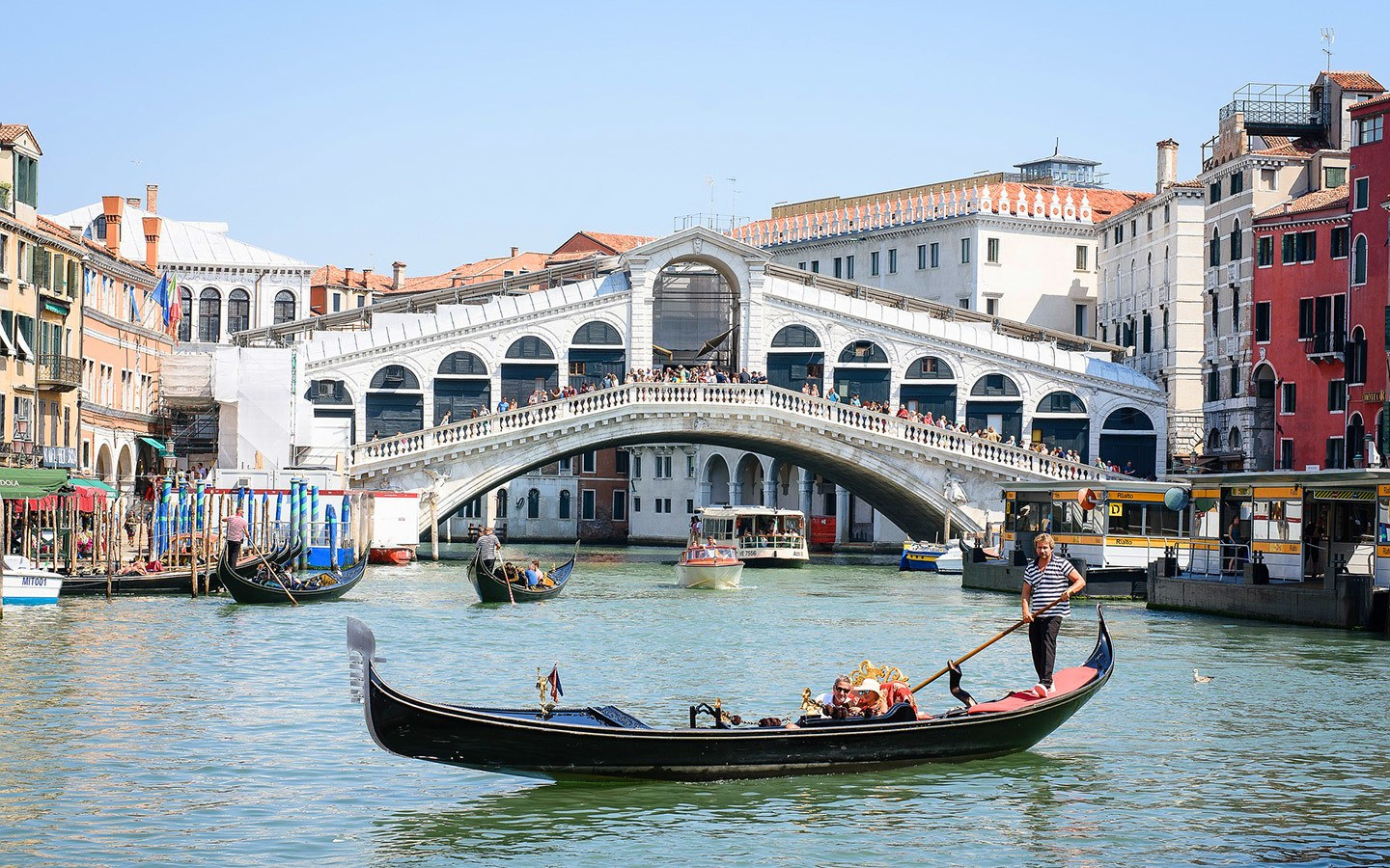 Gondolas and the Rialto Bridge in Venice