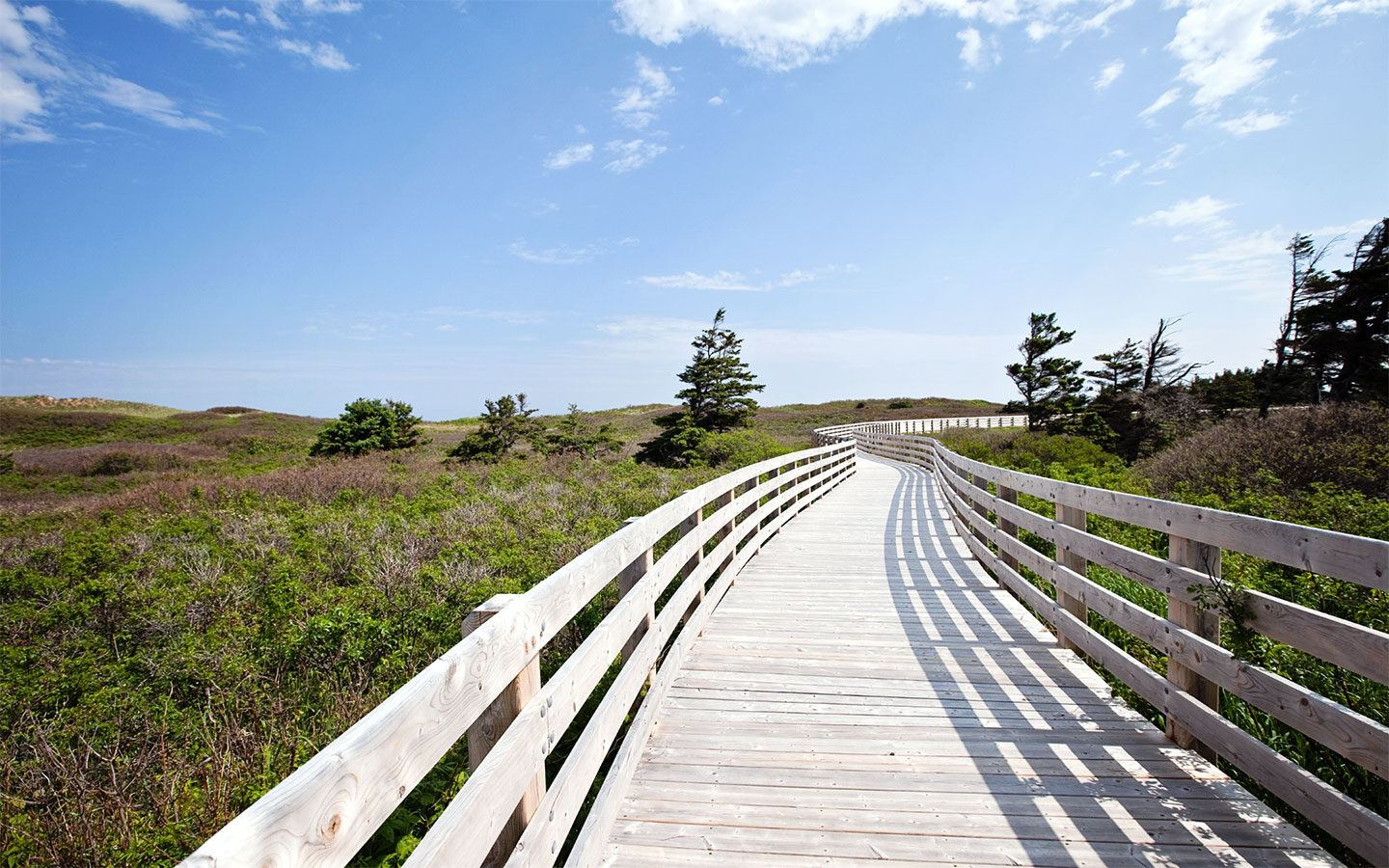 Greenwich Dunes Trail in Prince Edward Island National Park