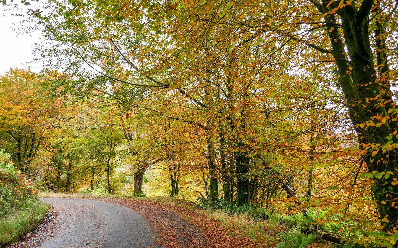 Autumn on Raasay